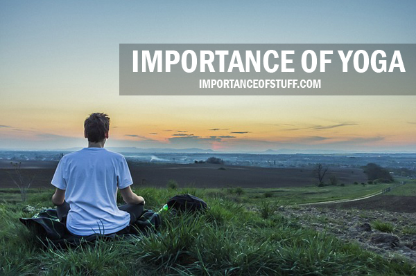 importance of yoga in our life essay and speech importance of yoga