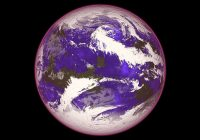 importance of ozone layer
