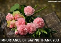 importance of saying thank you