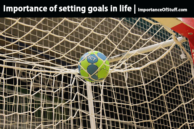 the importance of setting goals in life essay and speech importance of goals in life
