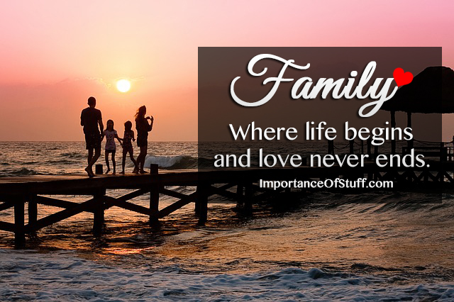 Essays on the importance of family