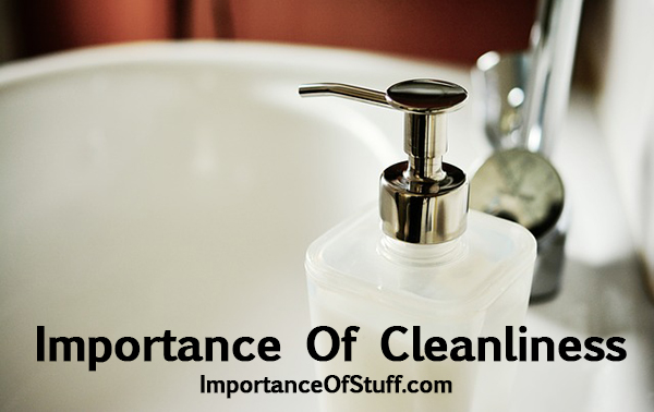 importance of cleanliness essay and speech personal hygiene