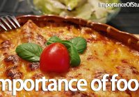 importance of food