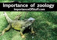 importance of zoology