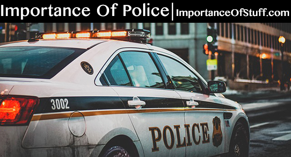 importance of police