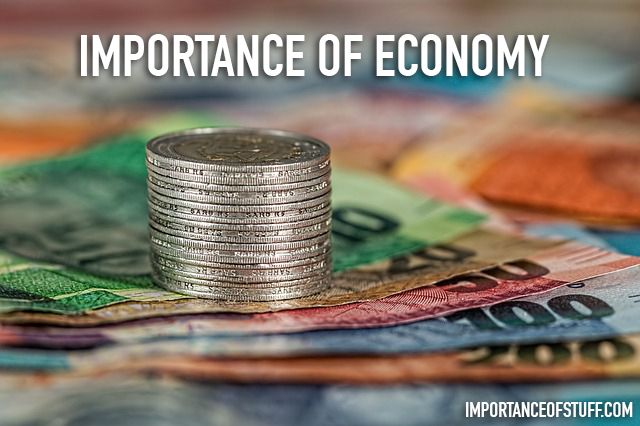 importance of economics