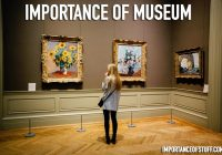 importance of museum