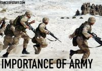 importance of army