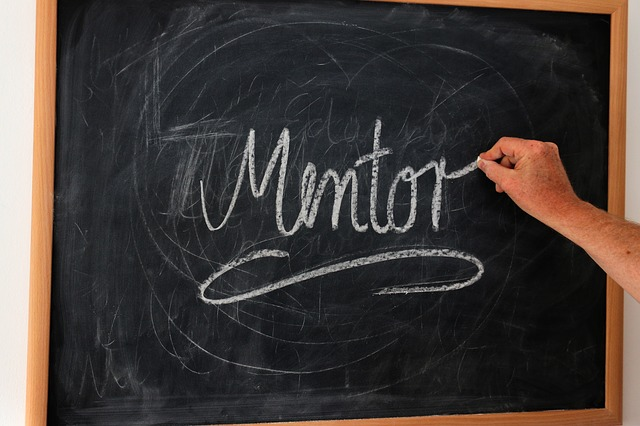 importance of mentor in life