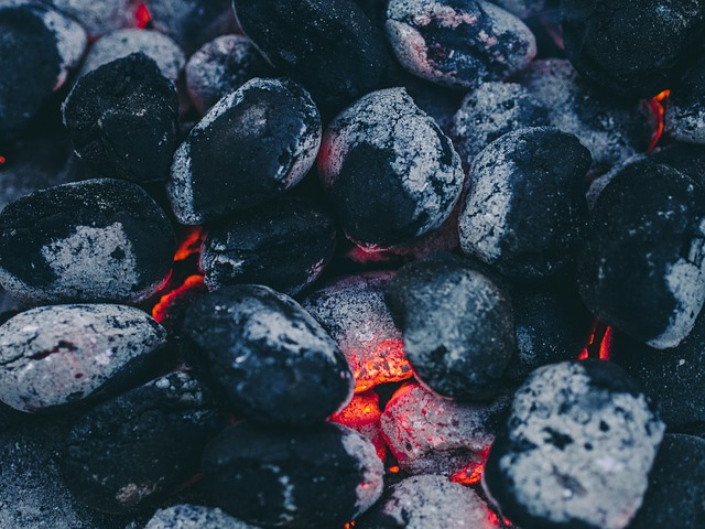 importance of coal